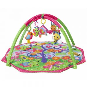 PLAYGRO Bugs´n´Bloom Activity Gym