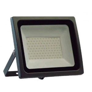 PROYECTOR LED 100 W